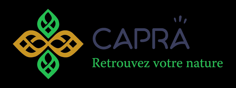 Logo Matthieu Despringre